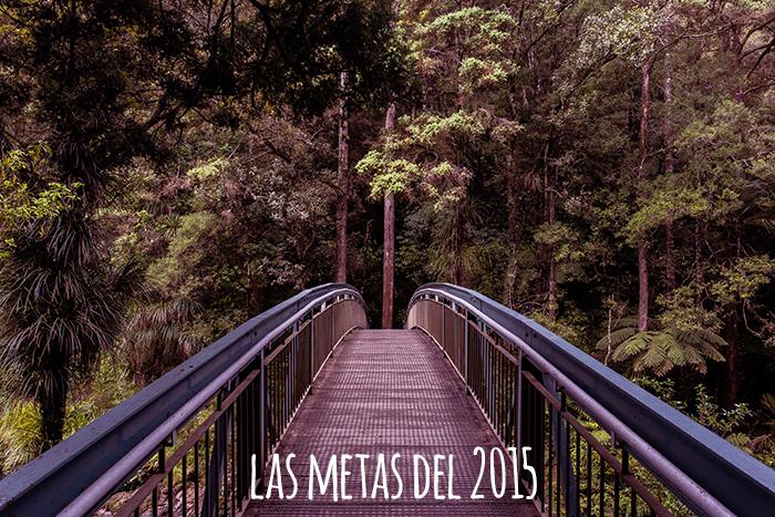 metas2015