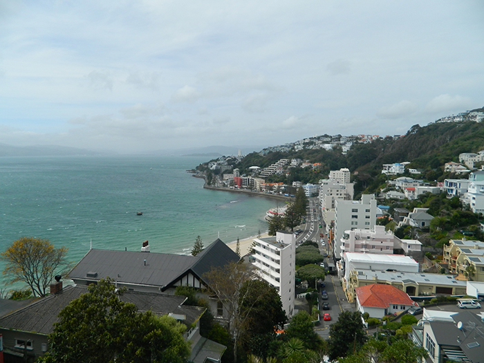 wellington15nz