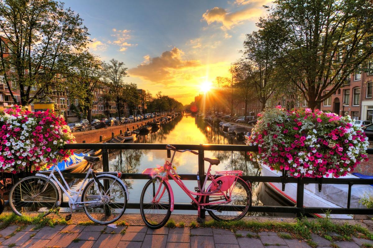 5 Cosas Que Quiero Hacer En Holanda Natified